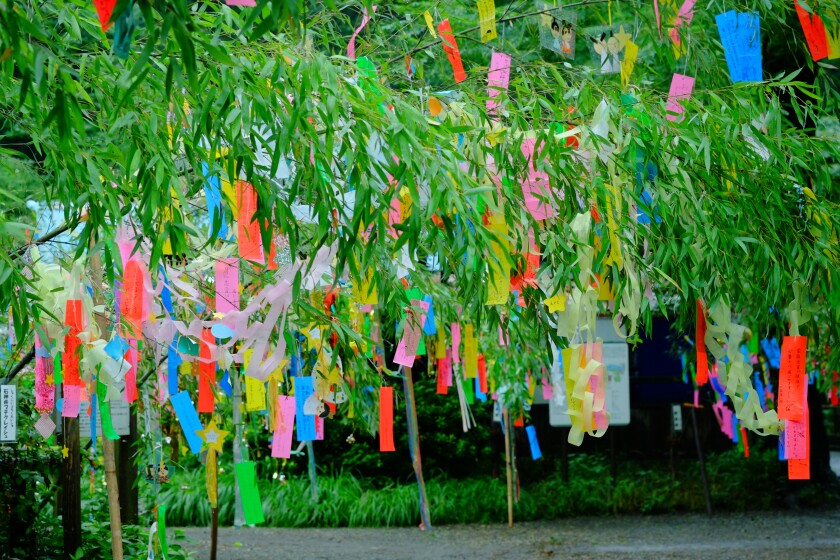 People write wishes on tanzaku (colorful strips of paper), then hang them on bamboo branches, praying for their wishes to come true.