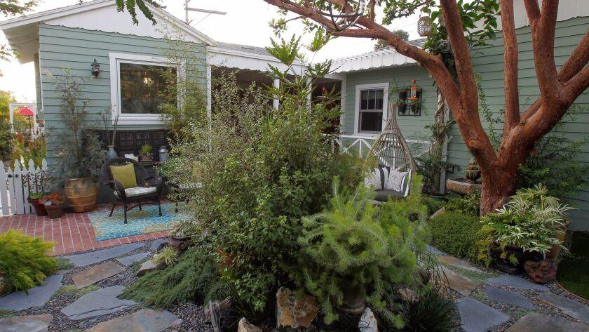 The backyard of house in Oceanside in mid-November.