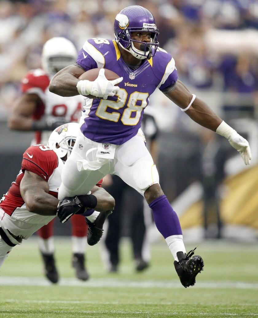 Minnesota Vikings running back Adrian Peterson nearly broke Eric Dickerson's single-season rushing record in 2012. Could he break the mark in 2013?