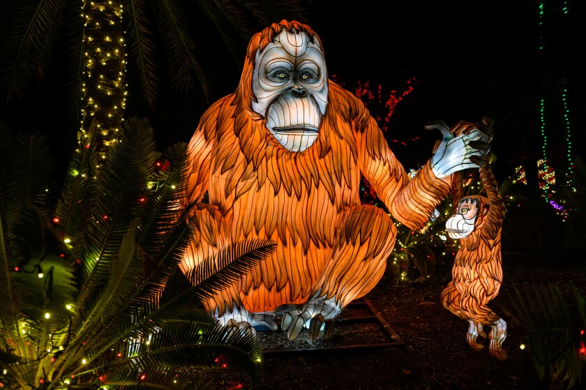 LA Zoo Lights holiday show