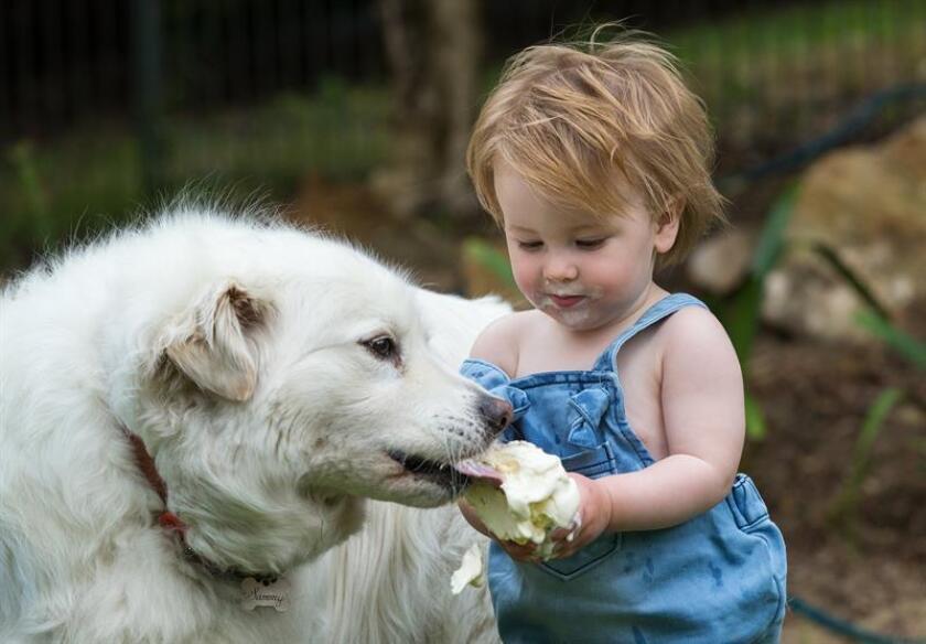 Una niña comparte su helado con su perro. EFE/Archivo