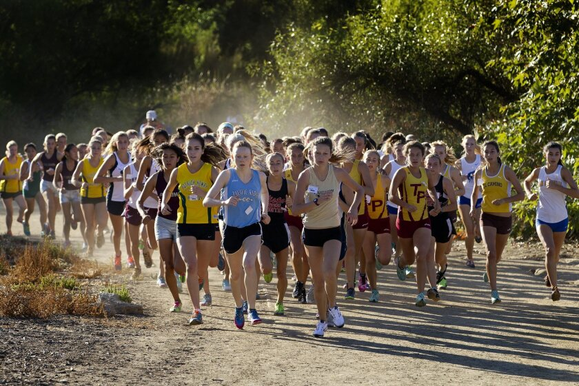 Saturday morning's Bronco Roundup high school cross country meet at Kit Carson Park started off with the girls Division I race.