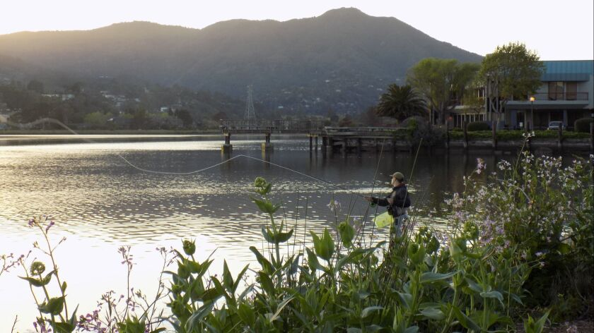 MILL VALLEY, CA-- A fisherman casts his line out back of the Acqua Hotel.