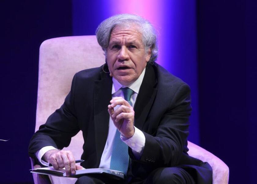 """El secretario general de la Organización de los Estados Americanos (OEA), Luis Almagro, habla durante la inauguración del """"Oslo Freedom Foro México"""" el martes 26 de febrero de 2019, en Ciudad de México (México). EFE/Archivo"""