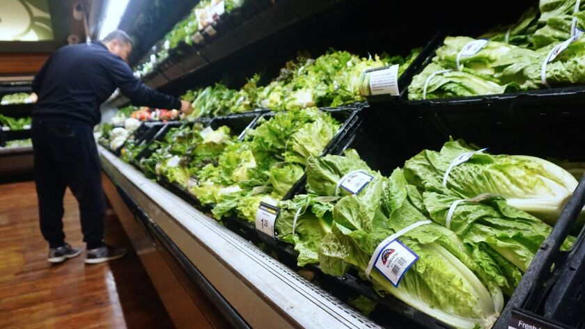 For the second time in eight months, consumers are being shooed away from the romaine bins of produce aisles, after another outbreak of illnesses linked to E. coli bacteria in the U.S. and Canada.