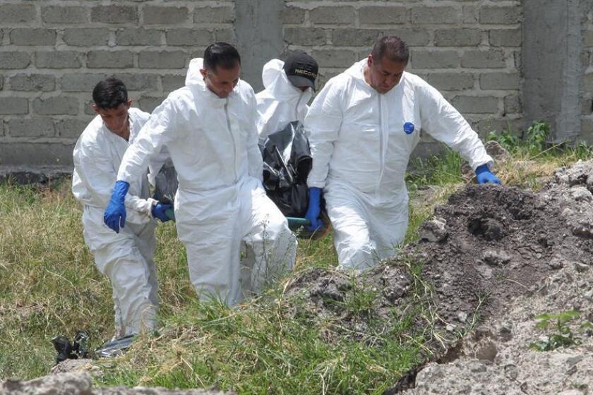 Vista general del grupo de expertos forenses que trabajan este miércoles 6 de junio de 2018, en la zona donde al menos ocho cuerpos fueron encontrados en una fosa clandestina, ubicada en una colonia cercana al Aeropuerto Internacional de Guadalajara, en El Salto, en el estado de Jalisco (México), confirmó hoy el Instituto Jalisciense de Ciencias Forenses (IJCF). EFE