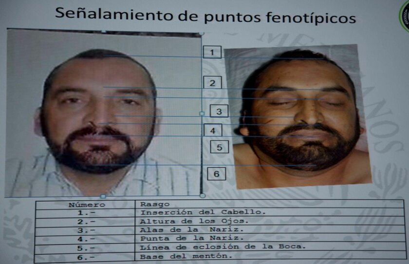 Mexico confirms Knights Templar cartel leader dead - The San