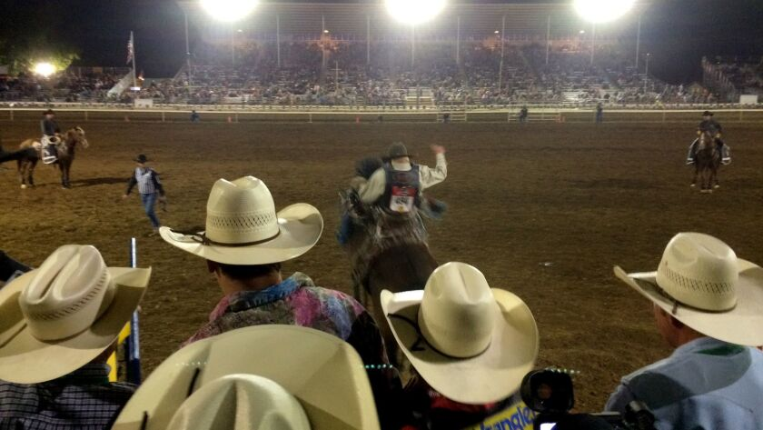 An image at the rodeo from 'The Last Cowboys' by John Branch.