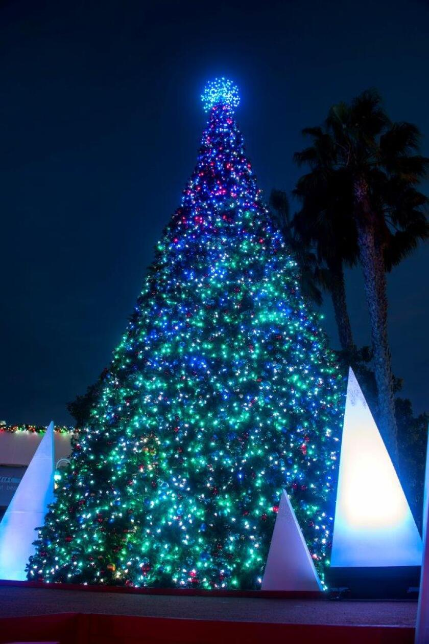 San Diego Christmas Events 2020 Your 2019 guide to Christmas tree and menorah lightings around San