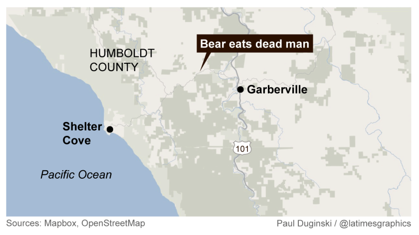 Black bear eats dead man