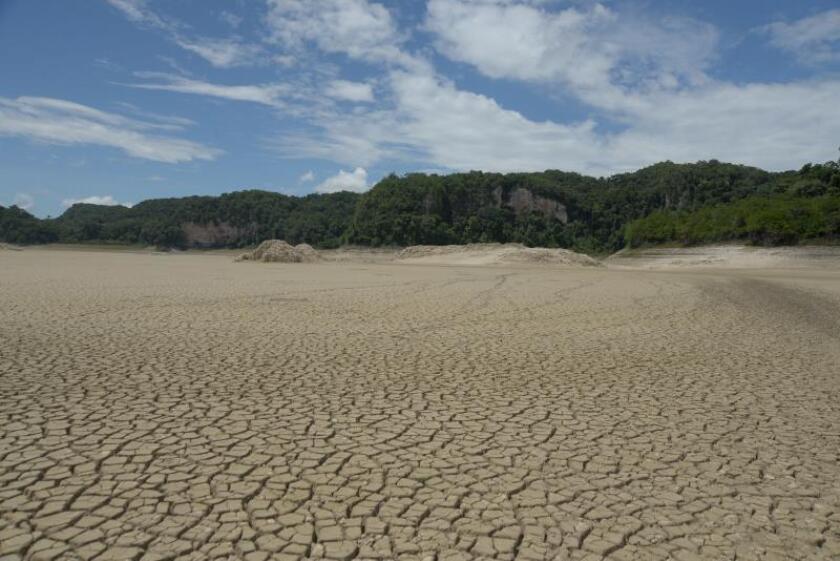 Se deseca una laguna en la selva del sureste de México por la crisis climática