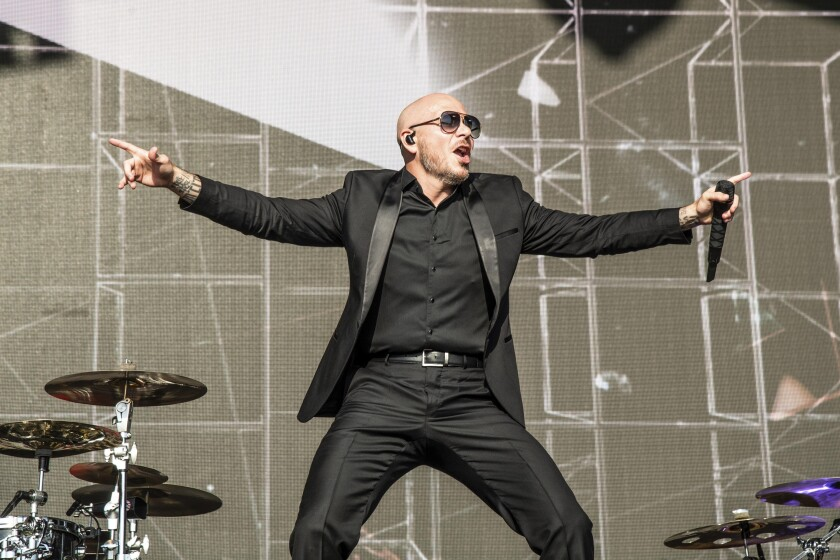 Pitbull 2 courtesy AP.jpg