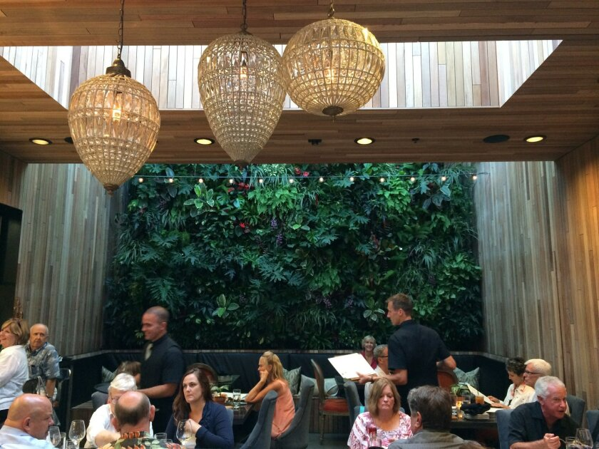 The living wall in the back dining room of the Patio on Goldfinch adds vibrancy to the scene.