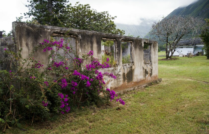 In this Feb. 6, 2016 photo, flowers grow around an abandoned structure that was once part of al leper colony in Molokai in Kalaupapa, Hawaii. A visit to the island of Molokai offers a window on a unique and tragic chapter of Hawaiian history. For about a century beginning in 1866, some 8,000 individuals afflicted with leprosy were quarantined to live out their lives on the remote Kalaupapa Peninsula. Their stories are told at Kalaupapa National Historical Park. (AP Photo/Marco Garcia)
