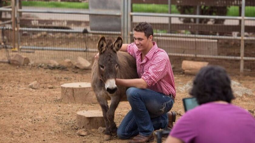Samuel Sugarman, 18, photographed last month on his family's Sugar Sweet Farm in Olivenhain with their rescued burro Gabriella.