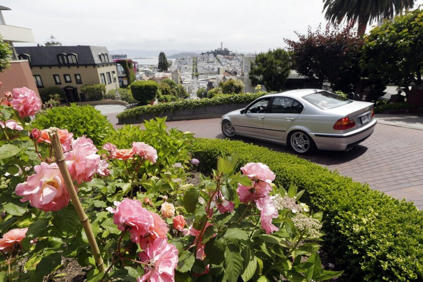 Flowers bloom on Lombard Street on Tuesday, May 20, 2014, in San Francisco.  San Francisco's crooked street could soon be closed to tourists in the summertime. A transportation commission is scheduled to consider an experimental shutdown of the famously curvaceous block of Lombard Street plus an ad