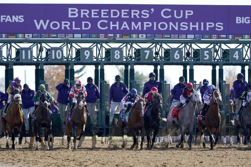 Horses break from the start of the Breeders' Cup Dirt Mile race at Keeneland Race Course in Lexington, Ky., on Nov. 7, 2020.