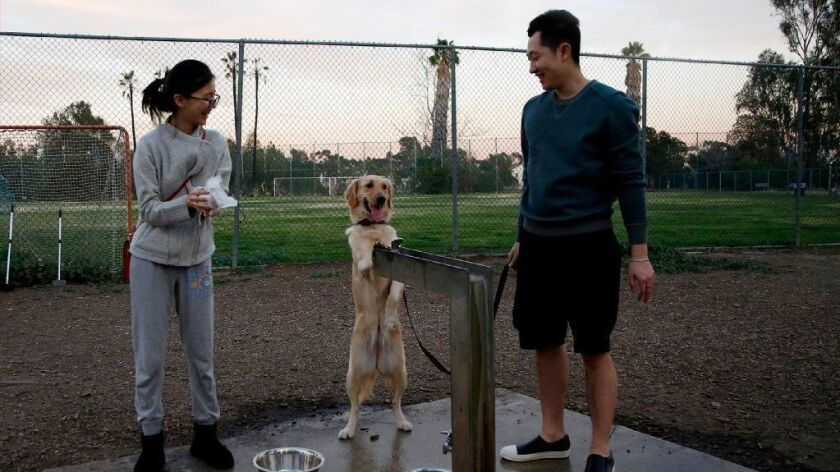 A Brentwood dog park operated by the city of Los Angeles sits on Department of Veterans Affairs land in West Los Angeles.