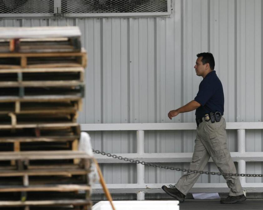 Un agente del Servicio de Inmigración y Aduanas (ICE) se dirige al interior de una fábrica en busca de personas indocumentadas. EFE/Aaron Sprecher/Archivo