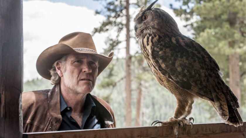 Robert Taylor in the season finale of 'Longmire' on A&E