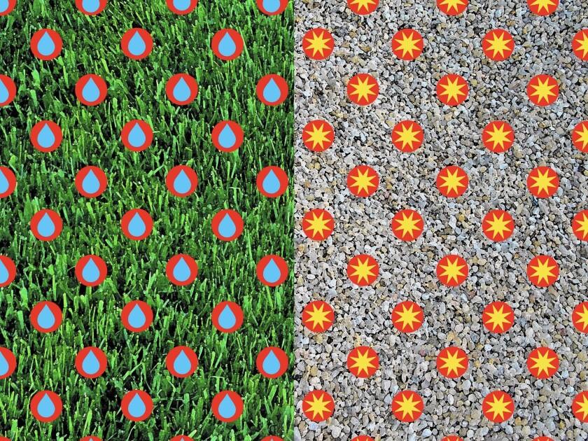 Green grass versus gravelscape