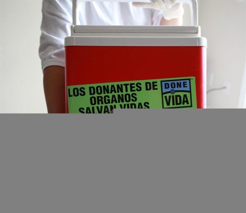 Fotografía de una enfermera sosteniendo una caja de transporte de órganos con un mensaje en español. EFE/Archivo