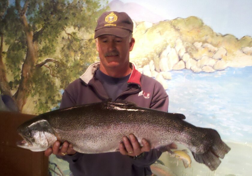 Angler Brad Voigt landed this 14-pound, 12-ounce rainbow trout at Lake Morena and tied the lake record in the process.