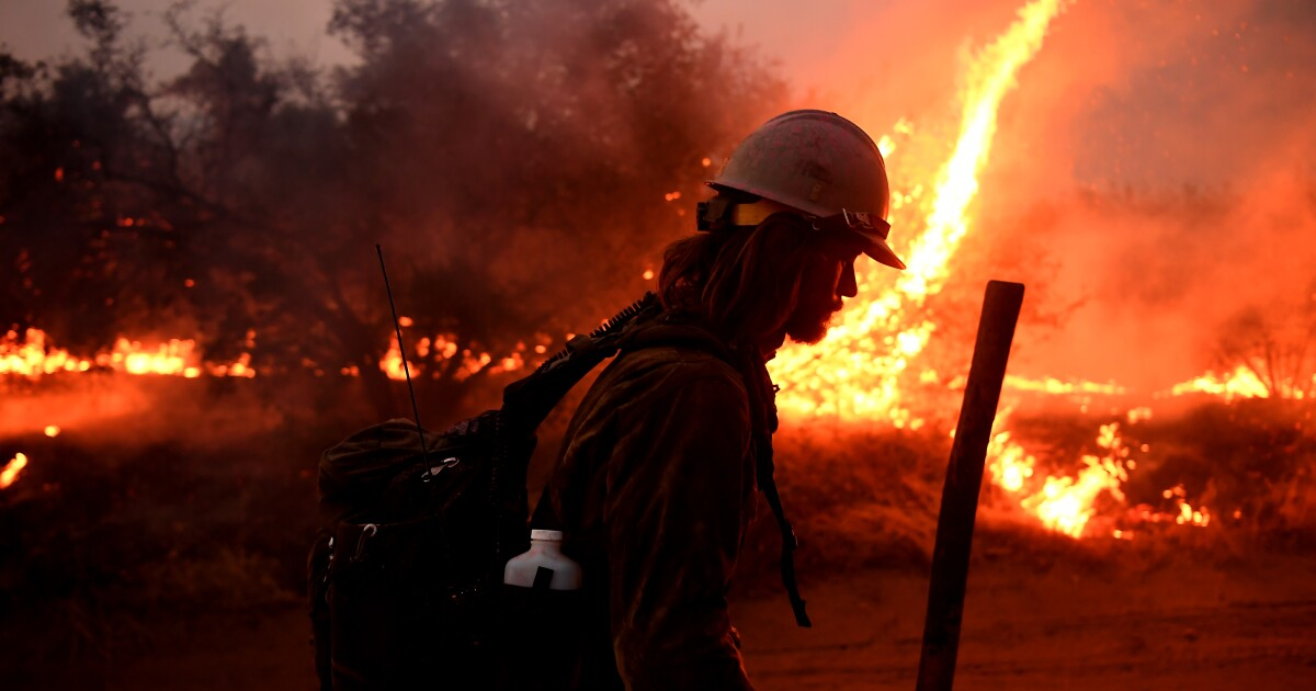 El Dorado fire sparked by pyrotechnic device used during gender-reveal party at Yucaipa park