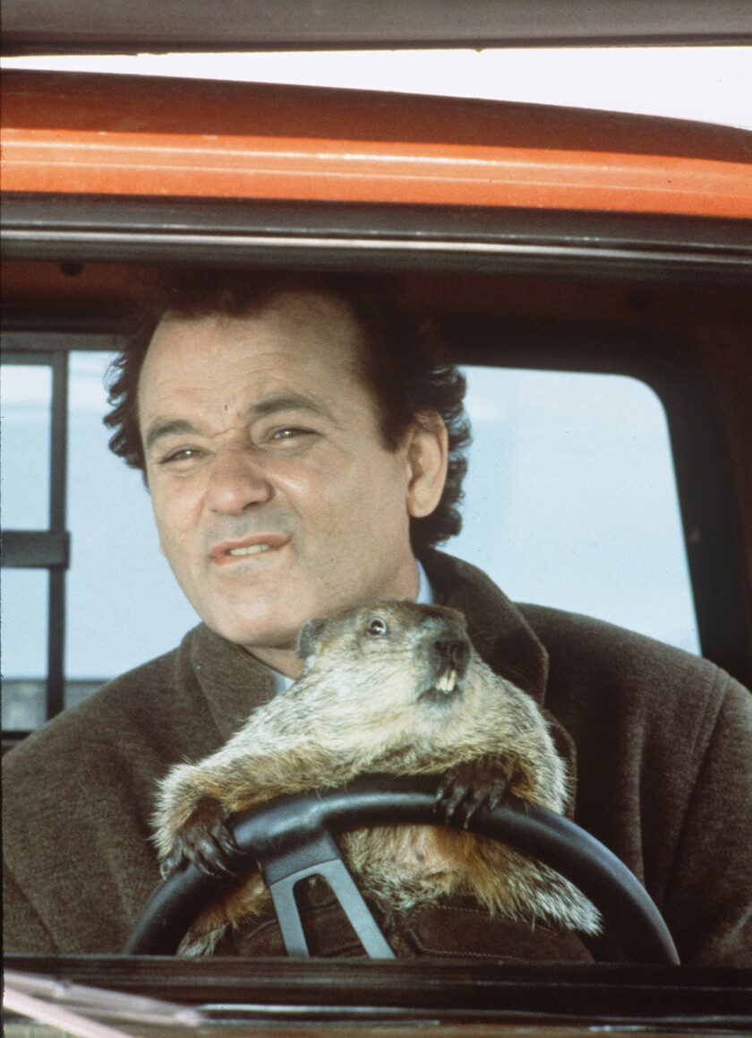 """The Bill Murray-starring """"Groundhog Day"""" is set to hit Broadway as a musical in 2017."""