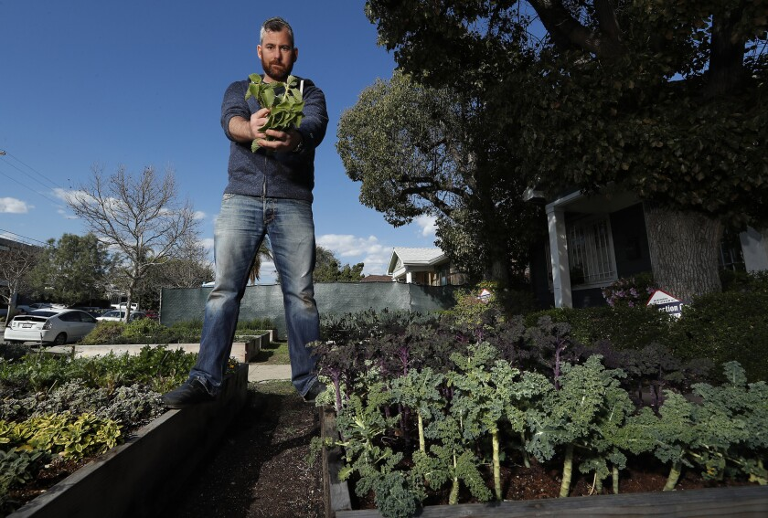 Kevin Meehan, chef-owner of Kali restaurant on Melrose Avenue in Los Angeles, in an urban garden located in the front yard of a home near his restaurant.