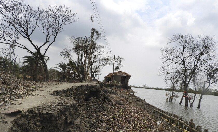 India Sundarbans