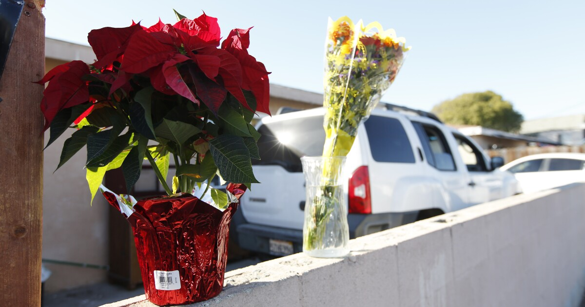 Boy who survived Paradise Hills murder-suicide fighting for his life, family members say - The San Diego Union-Tribune