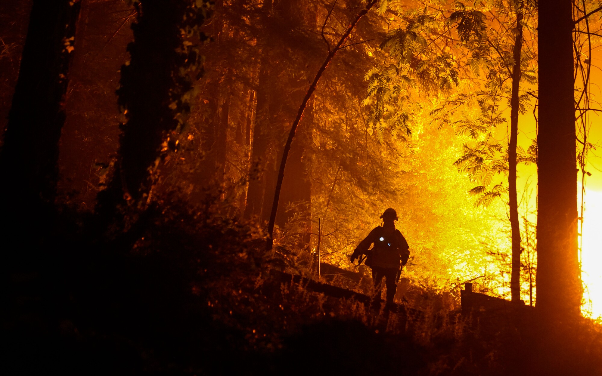 A firefighter silhouetted by fire in a forest