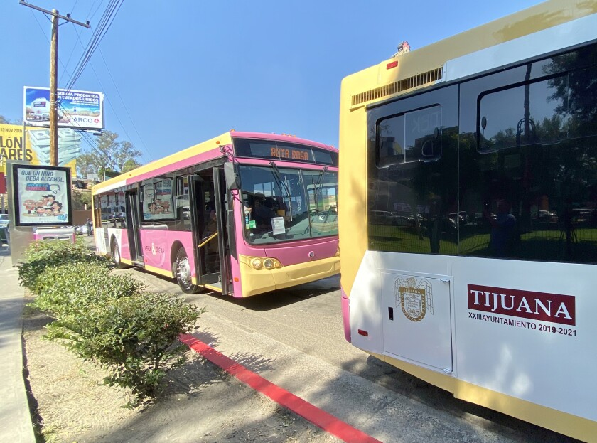 The first two pink buses in Tijuana on Oct. 23.