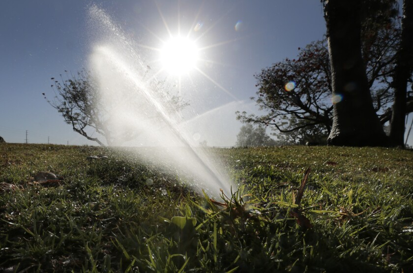 Marina Vista Park in Long Beach uses conservation-friendly sprinkler heads to water the athletic fields twice a week.