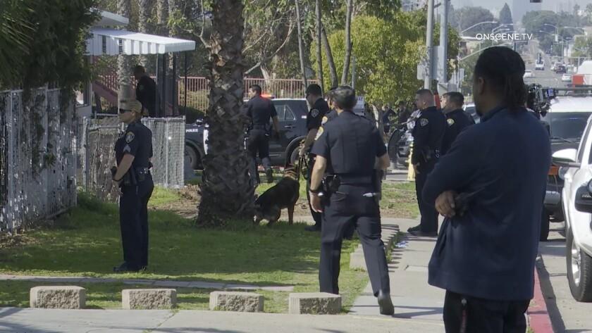 Armed-Suspect-School-in-Lockdown.mp4.00_04_31_55.Still003.jpg