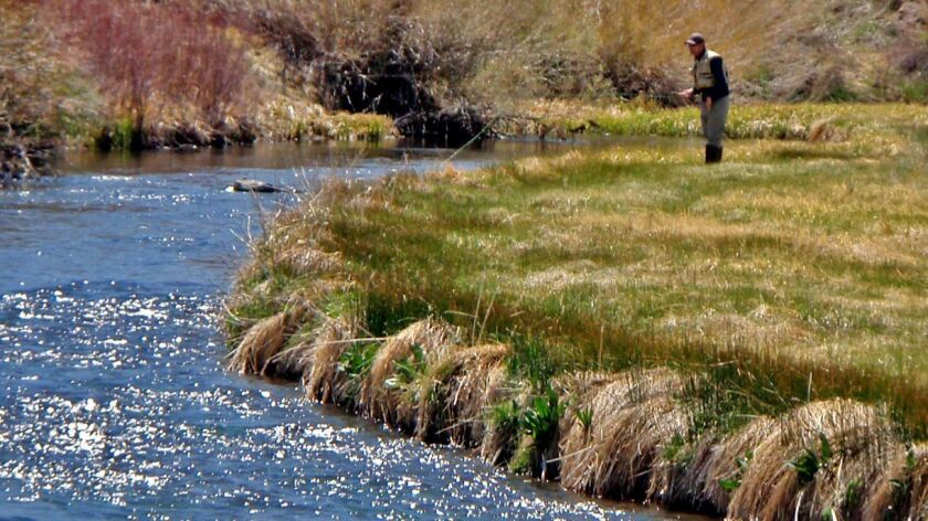 A Sierra fishing guide shares his tips on what you can expect from