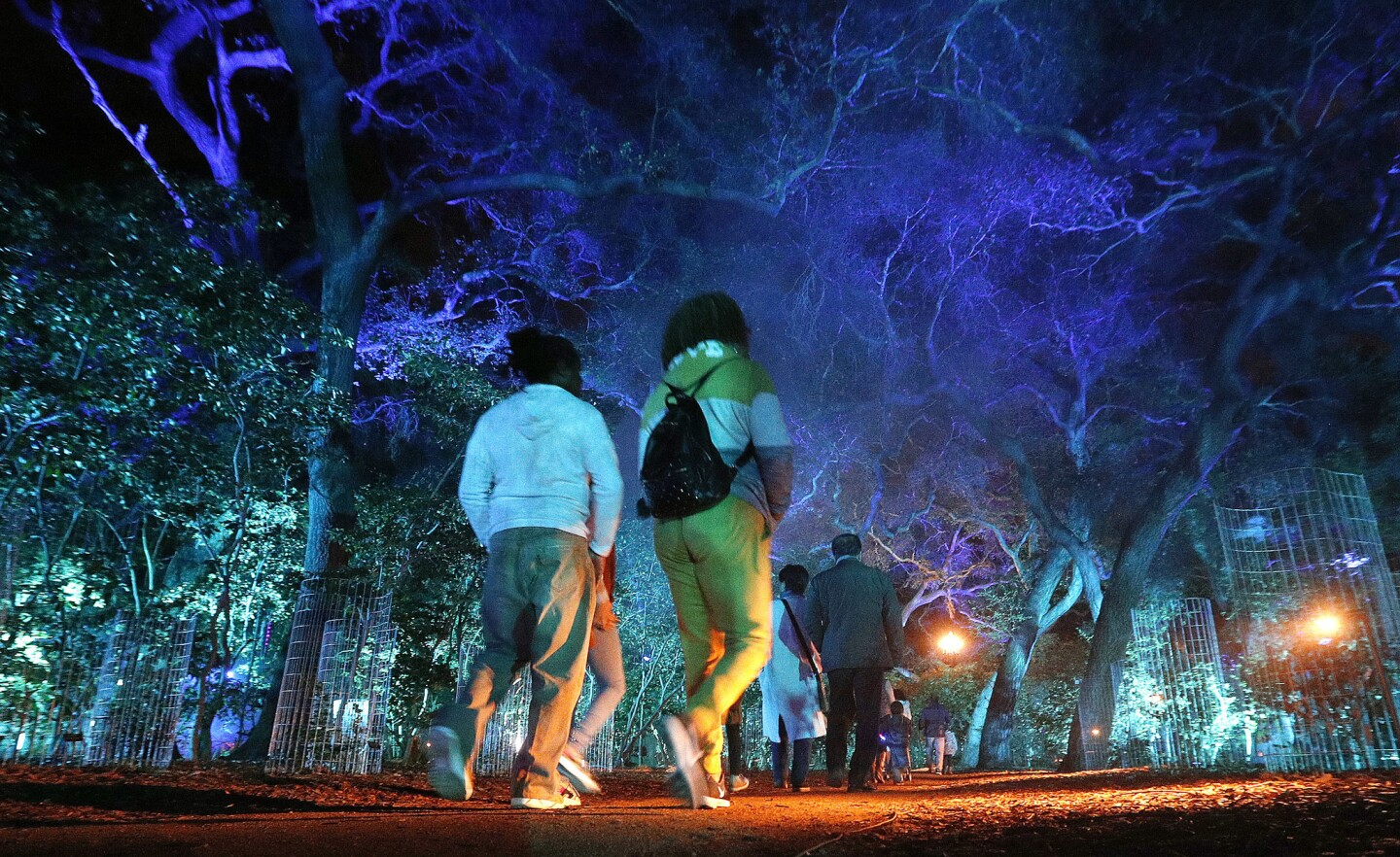 Photo Gallery: Descanso Gardens Enchanted Forest of Light