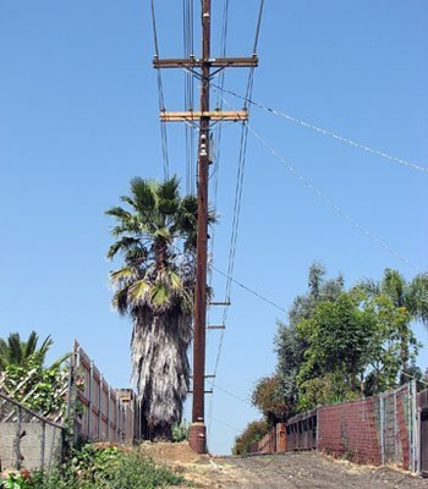 Humming, arcing of electrical lines worry La Mesa homeowner