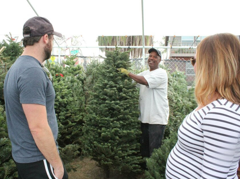 Sean and Deanna Winchell (at left and right), residents of Mission Valley, make their way to La Jolla for the Christmas tree selection offered by the La Jolla Mr. Jingle's Christmas Trees location. Keith Banks, in his second year as a salesman at the tree lot, helps the Winchells select their 5-foot Noble fir.