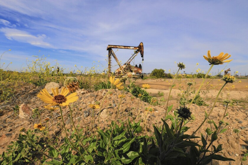 A pump jack in the Banning Ranch oil field. The Newport Banning Ranch project is proposed for the area, the largest remaining parcel of undeveloped coastal land in Southern California. It will be considered by the Coastal Commission later this year.