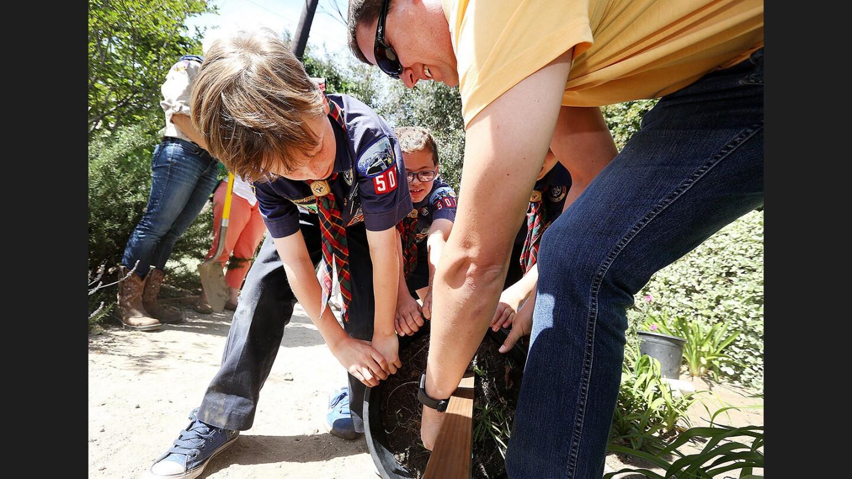 Photo Gallery: La Cañada Flintridge Webelos plant tree for Arbor Day