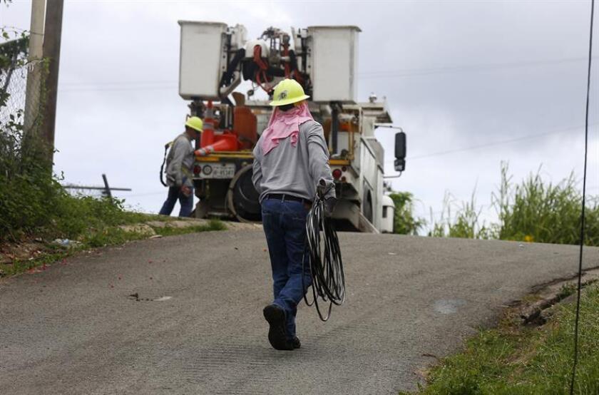 Fotografía de archivo que muestra a un empleado de Energía Eléctrica de Puerto Rico mientras trata de reparar algunos cables destruidos tras el paso del huracán María, en el municipio de Naguabo (Puerto Rico). EFE/Archivo