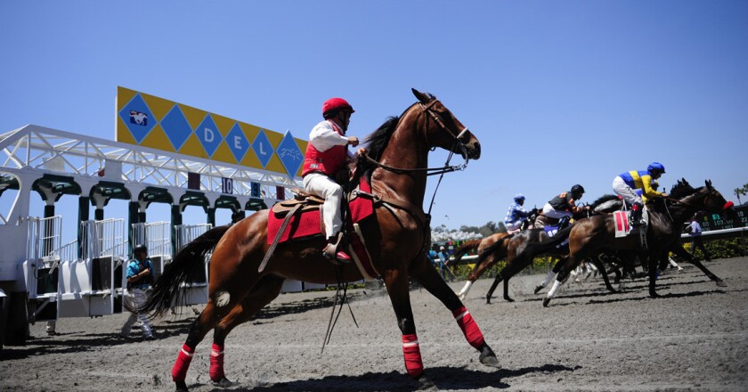 An outrider watches as horses leave the gate during the opening day of horse racing at the Del Mar Race Track in 2013. Last year the club was among entities that gave lawmakers free tickets.