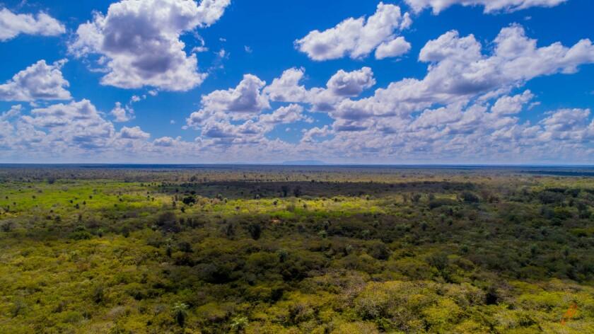 Landscape Gran Chaco.jpg
