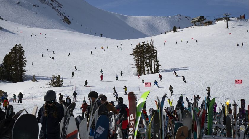 MAMMOTH LAKES, CA - JANUARY 19, 2019: Crowds pack the slopes after a recent snowfall dumped five fee