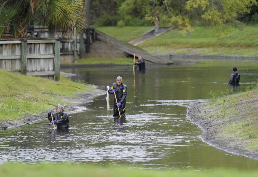 Law enforcement investigators in dry suits search the small retention pond near the entrance of the Southside Villas apartment complex off Southside Blvd. in Jacksonville, Florida Wednesday afternoon, November 6, 2019. Police in Jacksonville say Taylor Rose Williams was discovered missing from her bedroom early Wednesday. (Bob Self/The Florida Times-Union via AP)