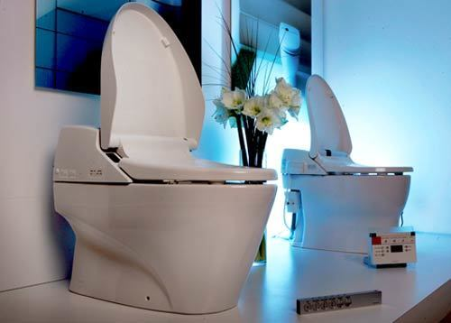 The bidet may be a French invention, but in Japan, the deluxe toilet has become an art form. The Japanese brand Toto has a store in West Hollywood where it sells its toilet-bidet combos Neorest 600, left, and 500. Other perks: a heated seat, auto flush and a lid that opens when you approach.