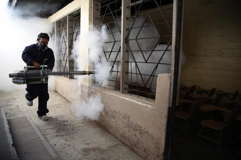 La Organización Mundial de la Salud declaró una emergencia global por la explosiva expansión del virus del zika, que se ha relacionado con defectos de nacimiento en las Américas. (AP Foto/Fernando Antonio)
