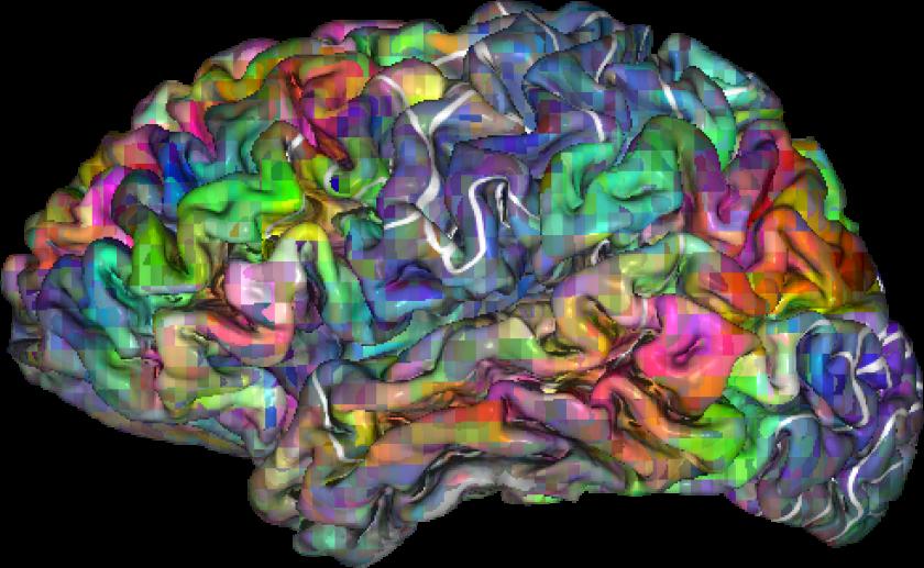 Brain semantics